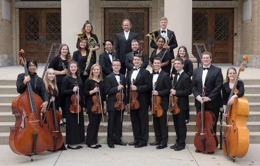 Chamber Orchestra 2017